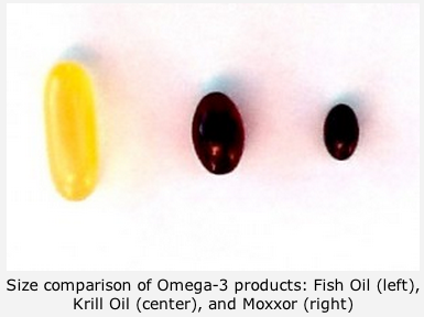 Choosing an omega 3 oil for your pet little big cat for Small fish oil pills