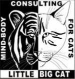 Little Big Cat Logo